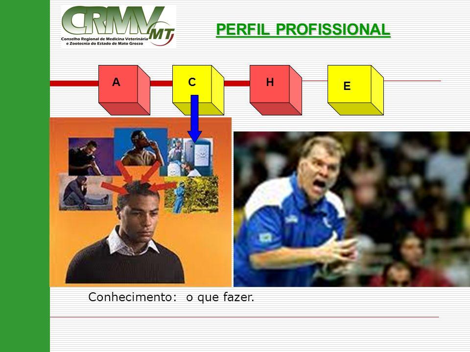 PERFIL PROFISSIONAL A C H E Conhecimento: o que fazer.