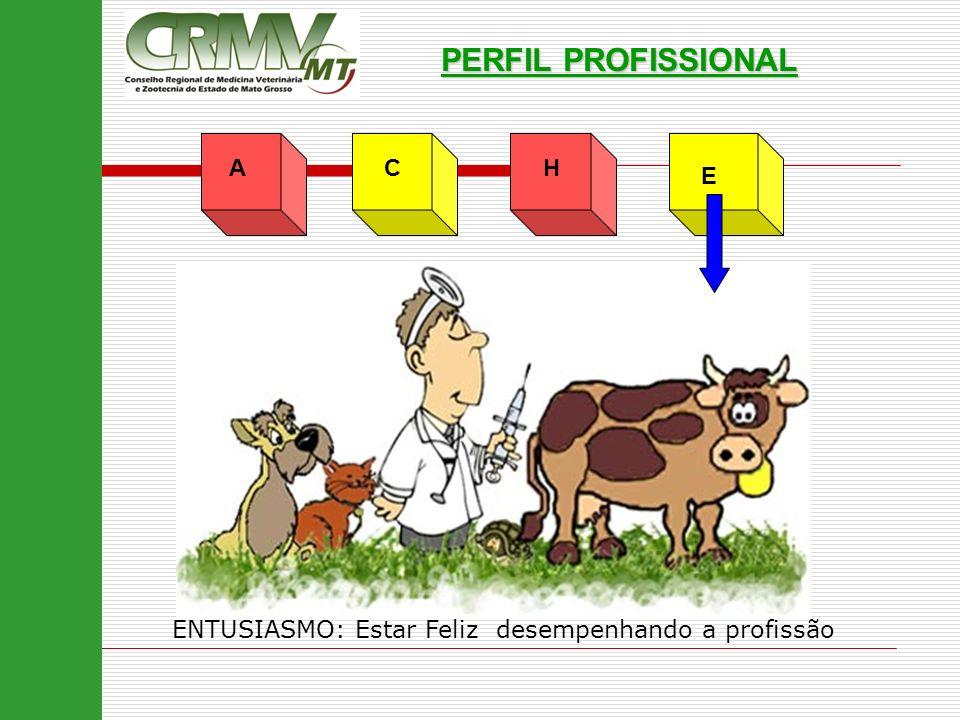 PERFIL PROFISSIONAL A C H E