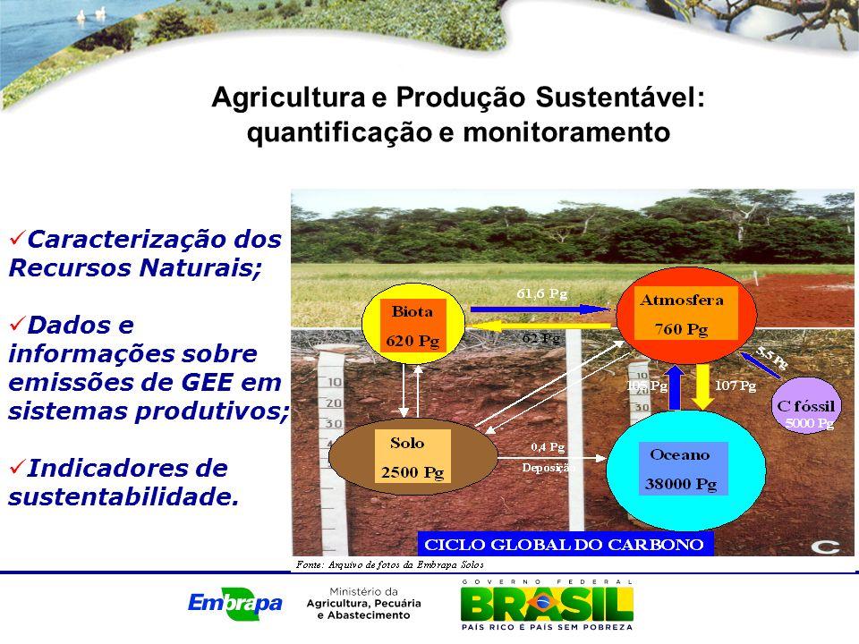 Agricultura e Produção Sustentável: quantificação e monitoramento