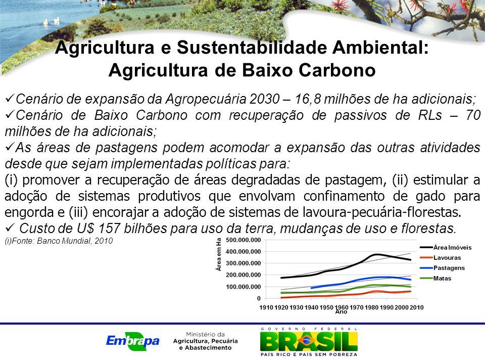 Agricultura e Sustentabilidade Ambiental: Agricultura de Baixo Carbono