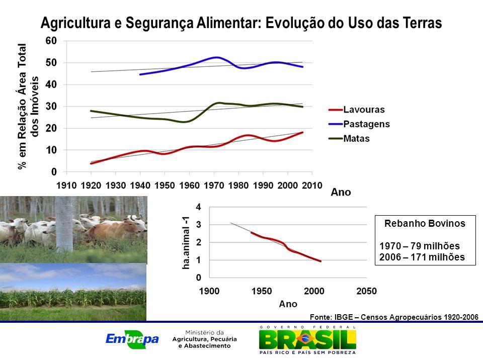 Agricultura e Segurança Alimentar: Evolução do Uso das Terras