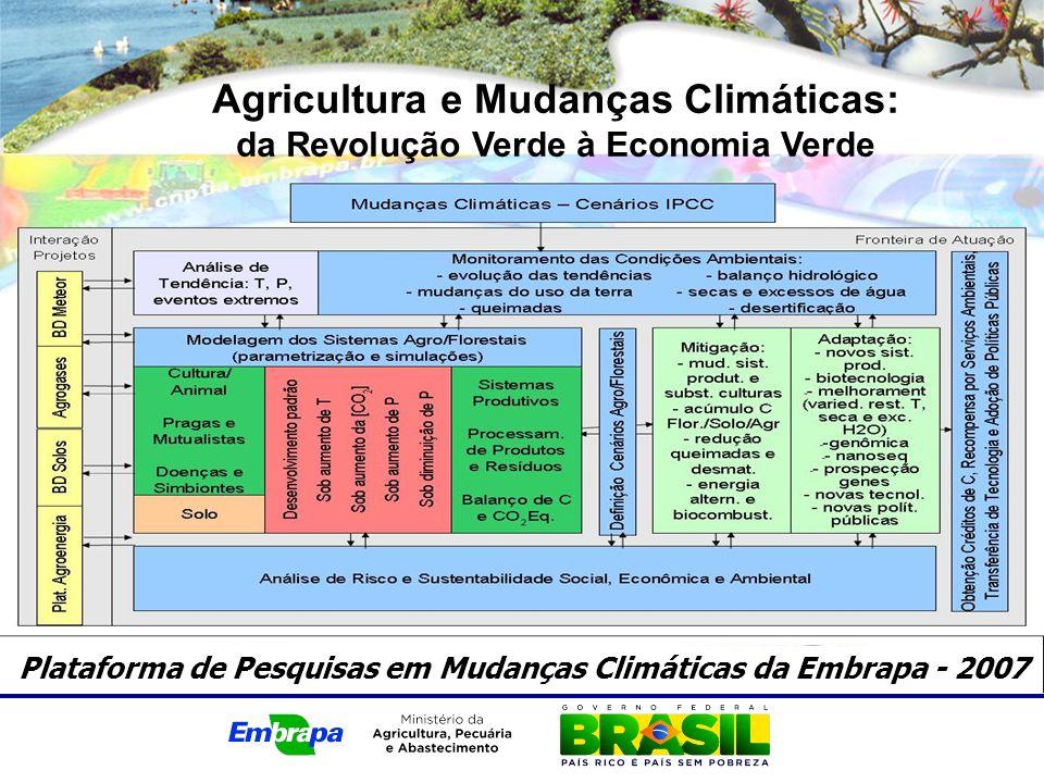 Agricultura e Mudanças Climáticas: da Revolução Verde à Economia Verde