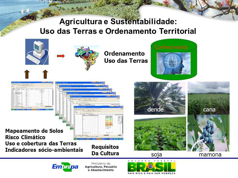 Agricultura e Sustentabilidade: