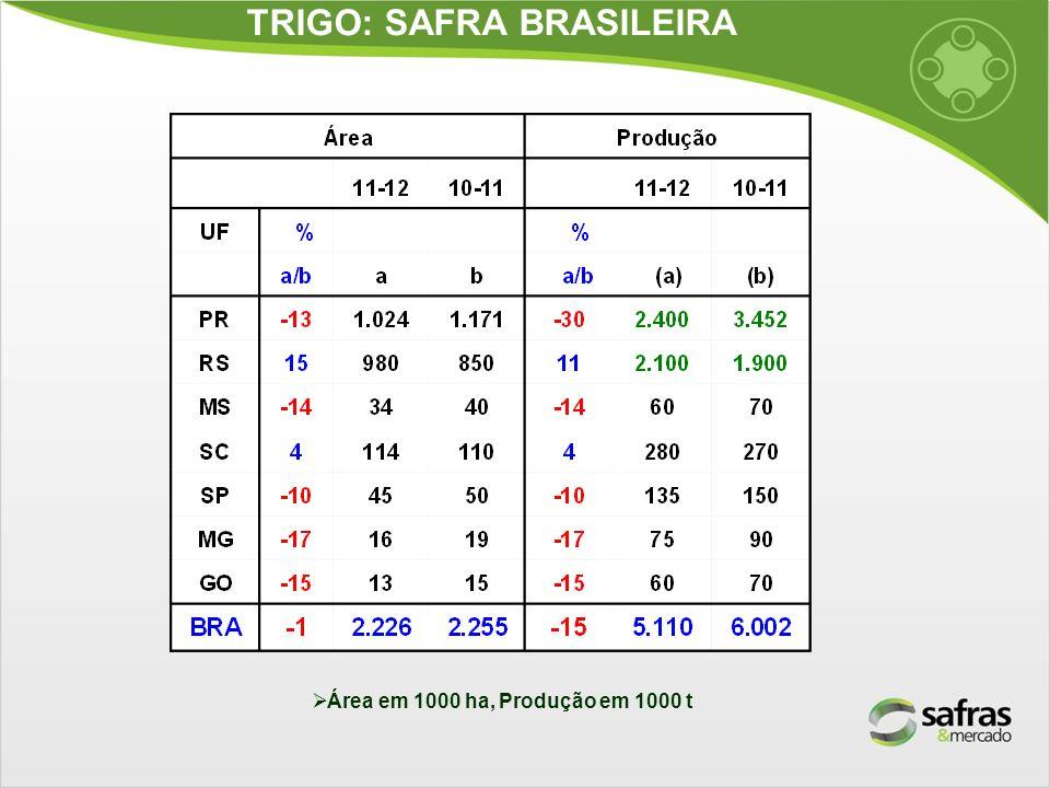 TRIGO: SAFRA BRASILEIRA