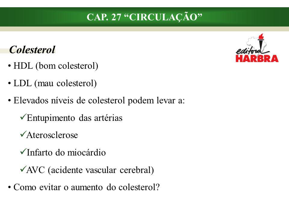 Colesterol CAP. 27 CIRCULAÇÃO HDL (bom colesterol)