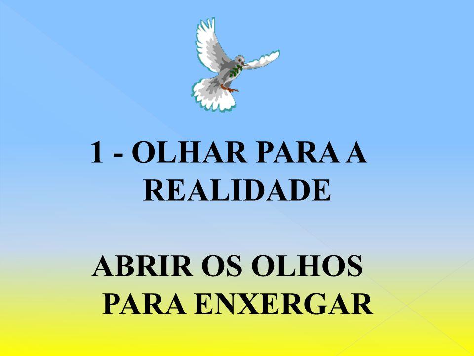 1 - OLHAR PARA A REALIDADE ABRIR OS OLHOS PARA ENXERGAR