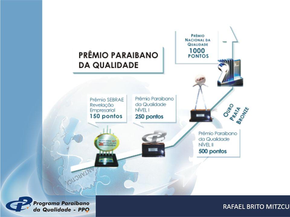 Cultura da Inovação RAFAEL BRITO MITZCUN