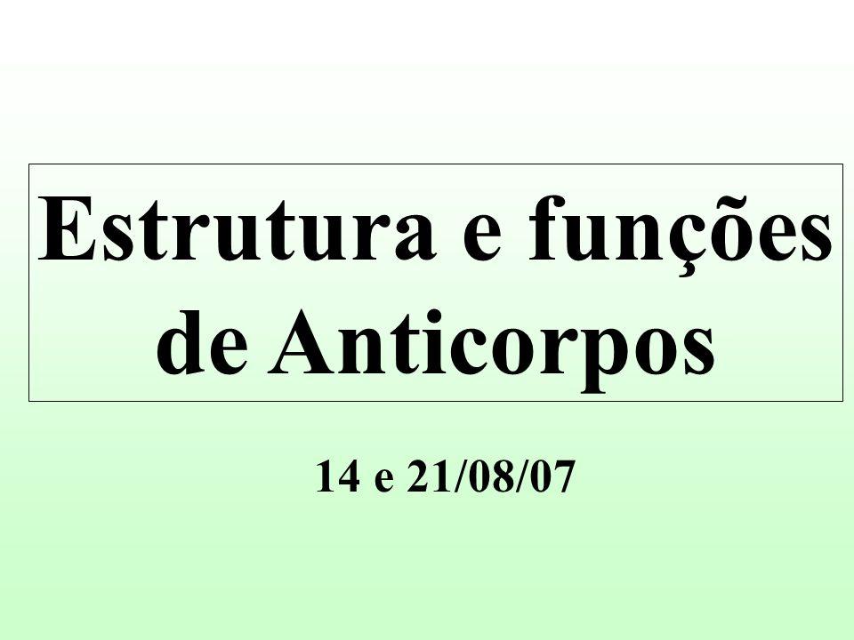 Estrutura e funções de Anticorpos
