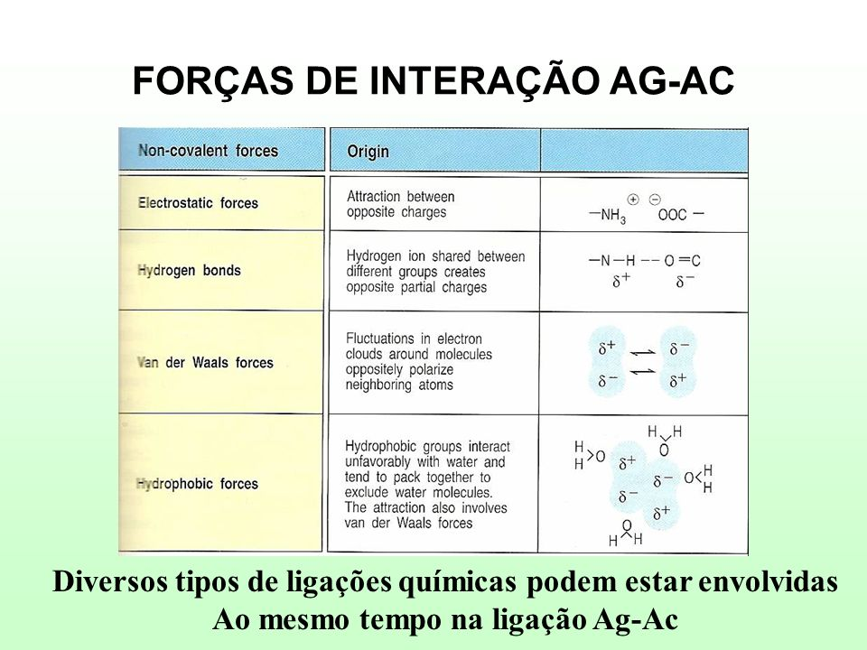 FORÇAS DE INTERAÇÃO AG-AC