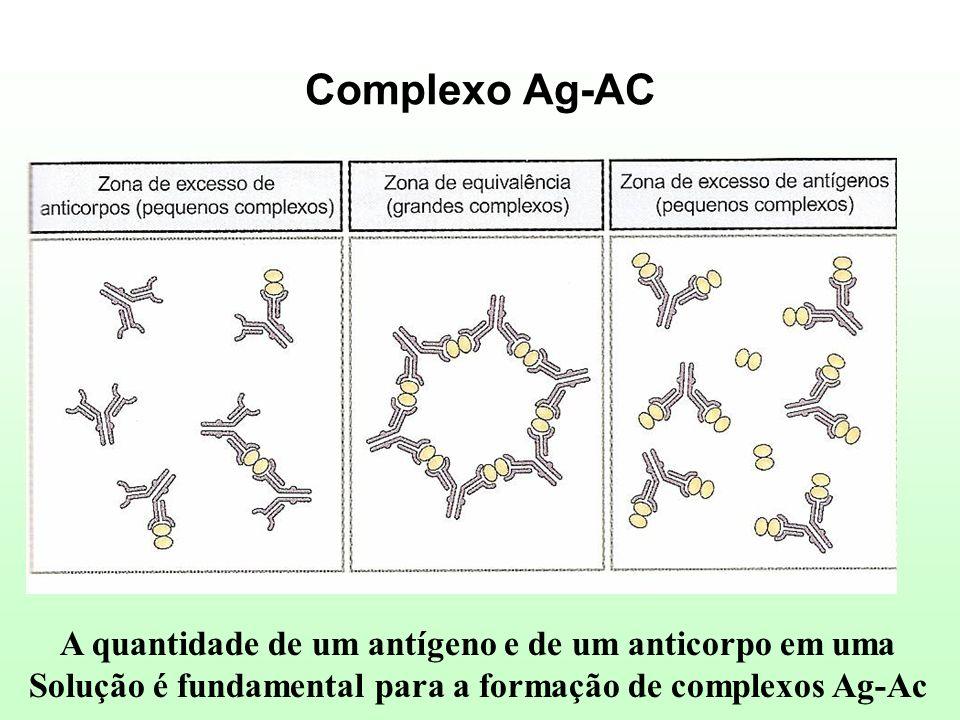 Complexo Ag-AC A quantidade de um antígeno e de um anticorpo em uma