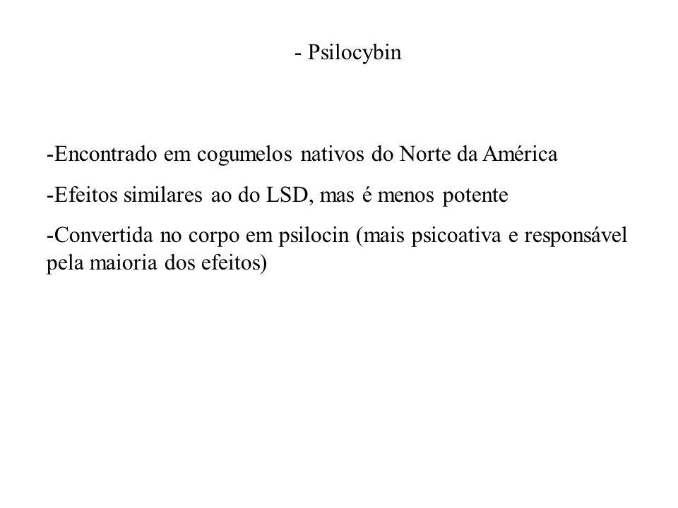 - Psilocybin Encontrado em cogumelos nativos do Norte da América. Efeitos similares ao do LSD, mas é menos potente.