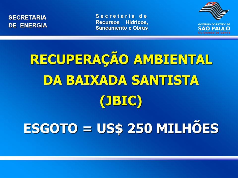 RECUPERAÇÃO AMBIENTAL DA BAIXADA SANTISTA (JBIC)