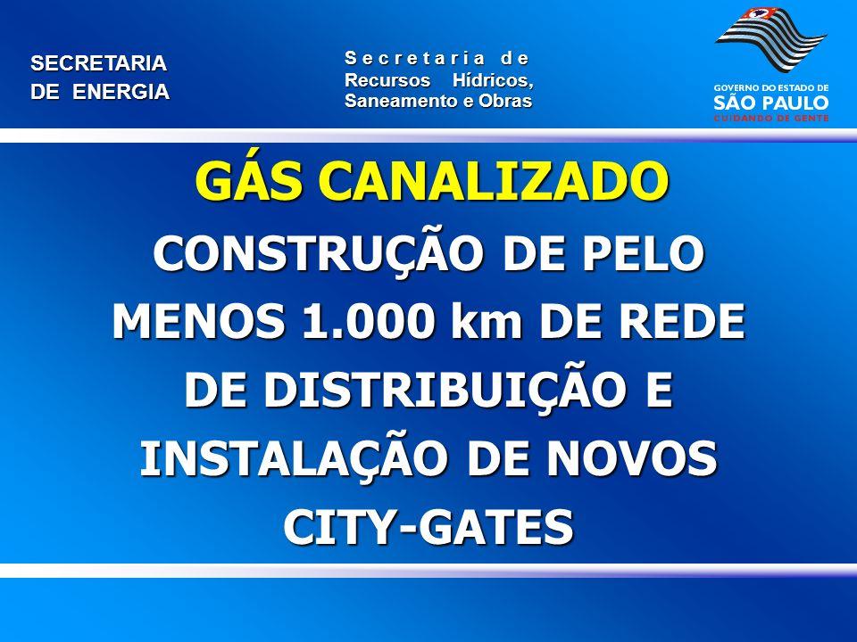 GÁS CANALIZADO CONSTRUÇÃO DE PELO MENOS 1.000 km DE REDE DE DISTRIBUIÇÃO E INSTALAÇÃO DE NOVOS CITY-GATES.