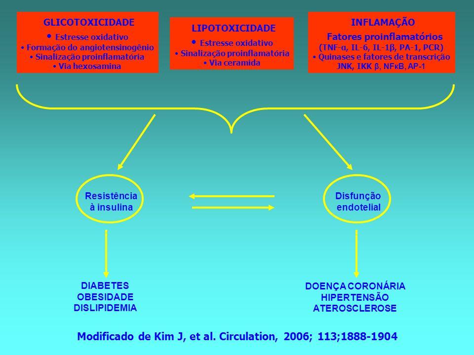 Fatores proinflamatórios LIPOTOXICIDADE Estresse oxidativo