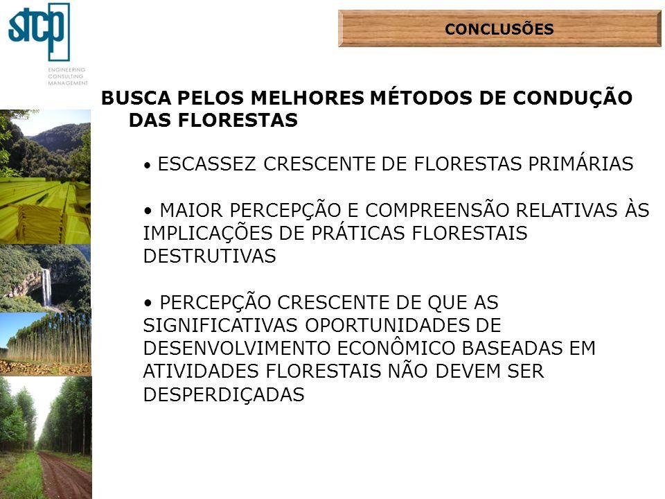 BUSCA PELOS MELHORES MÉTODOS DE CONDUÇÃO DAS FLORESTAS