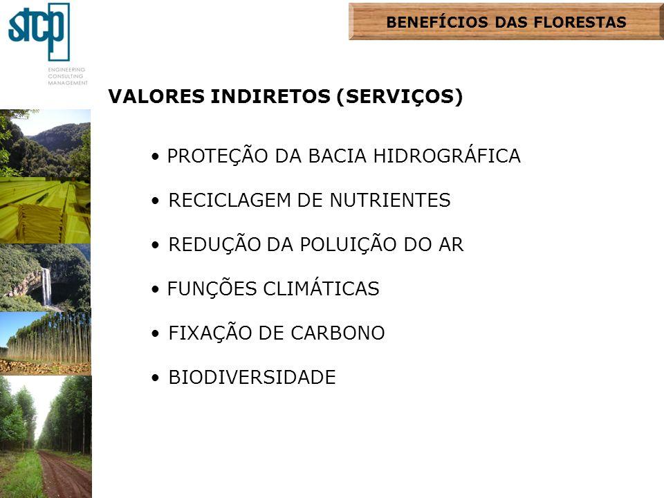 BENEFÍCIOS DAS FLORESTAS