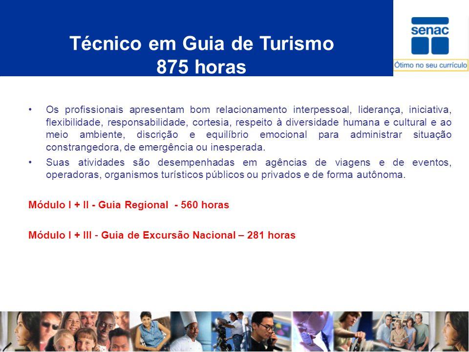 Técnico em Guia de Turismo 875 horas