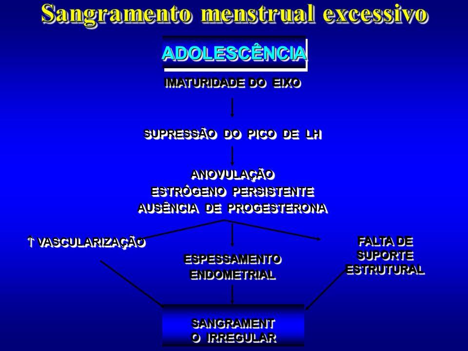 Sangramento menstrual excessivo