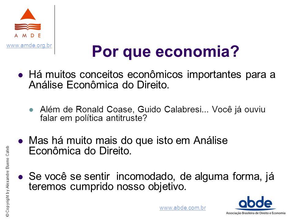 Por que economia Há muitos conceitos econômicos importantes para a Análise Econômica do Direito.