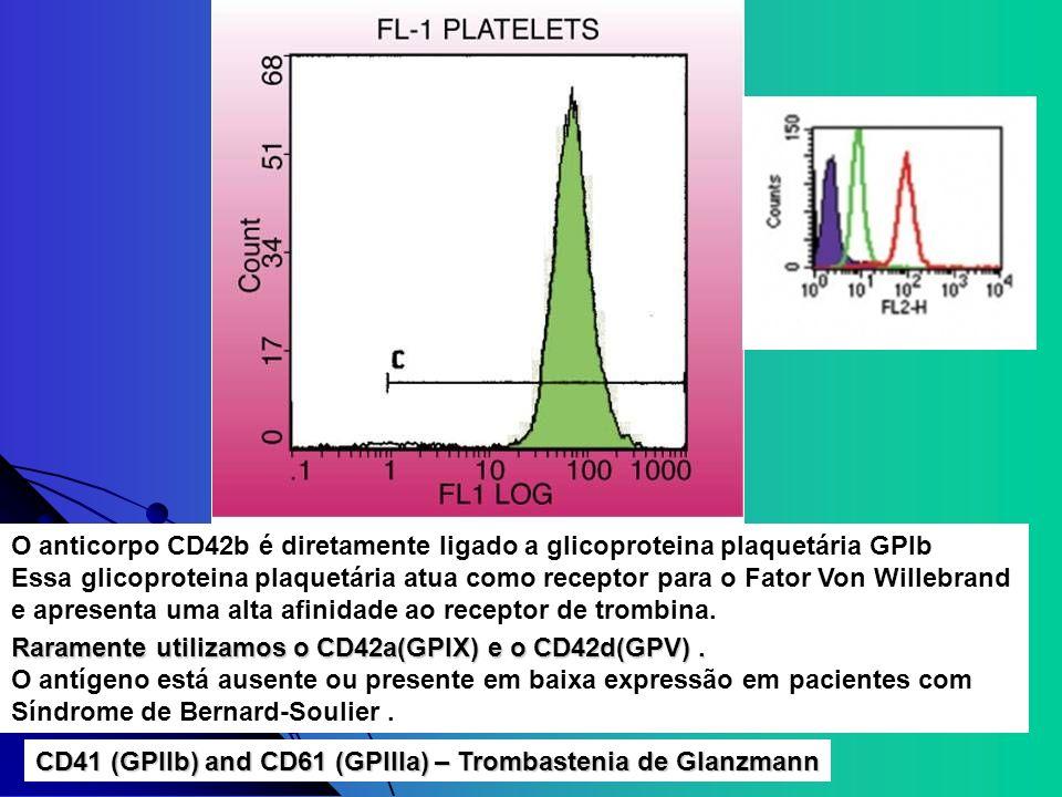 O anticorpo CD42b é diretamente ligado a glicoproteina plaquetária GPIb