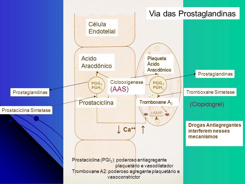 ↓ Ca++ ↑ Via das Prostaglandinas (AAS) (Clopidogrel) Prostaglandinas