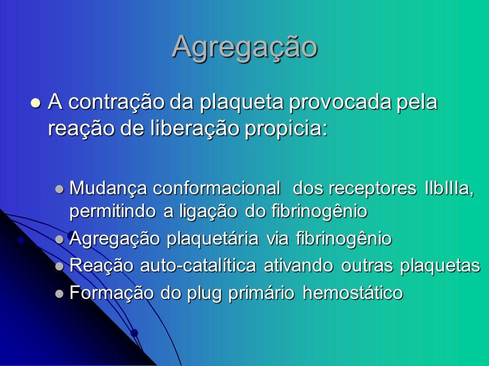 AgregaçãoA contração da plaqueta provocada pela reação de liberação propicia: