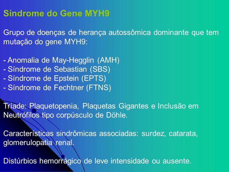 Síndrome do Gene MYH9 Grupo de doenças de herança autossômica dominante que tem mutação do gene MYH9: