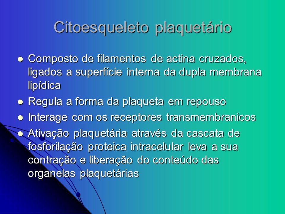 Citoesqueleto plaquetário
