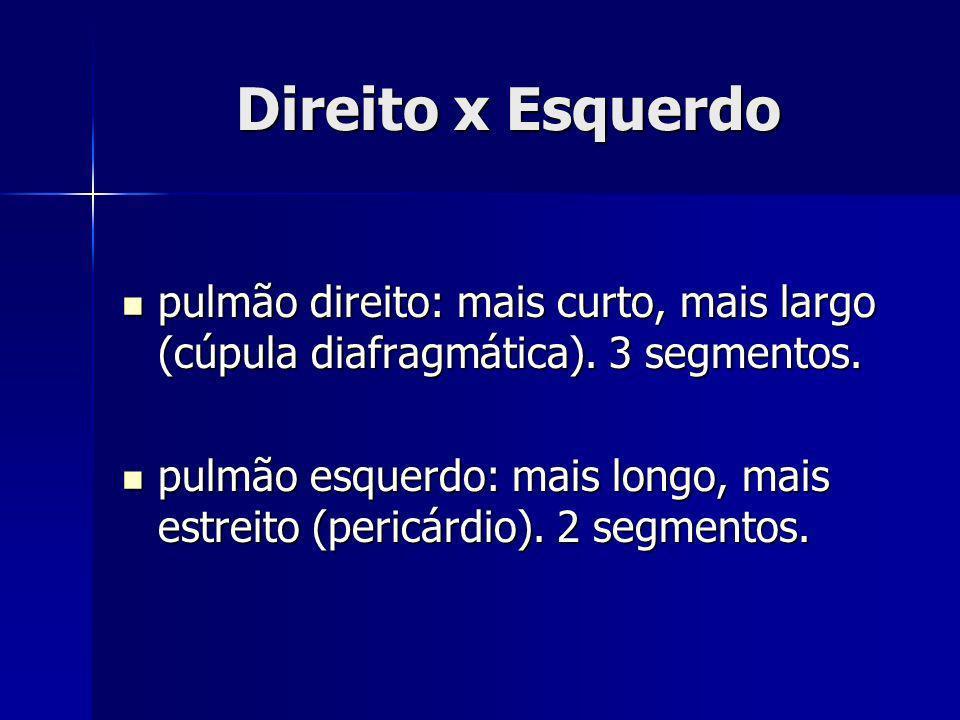 Direito x Esquerdopulmão direito: mais curto, mais largo (cúpula diafragmática). 3 segmentos.