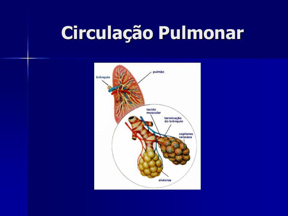 Circulação Pulmonar