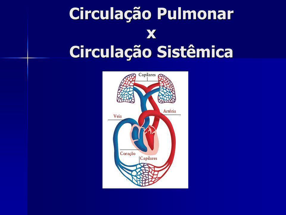 Circulação Pulmonar x Circulação Sistêmica