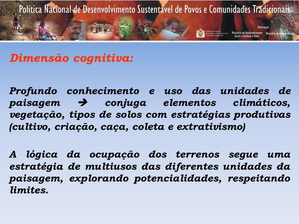 Dimensão cognitiva: