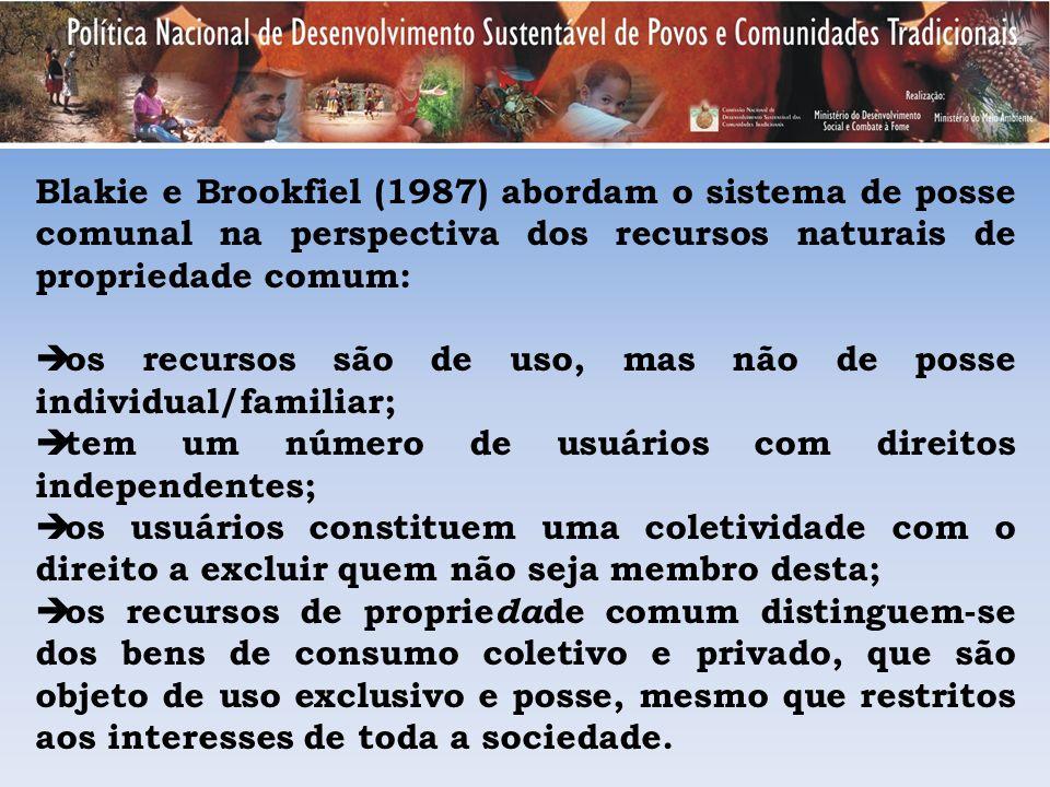 Blakie e Brookfiel (1987) abordam o sistema de posse comunal na perspectiva dos recursos naturais de propriedade comum: