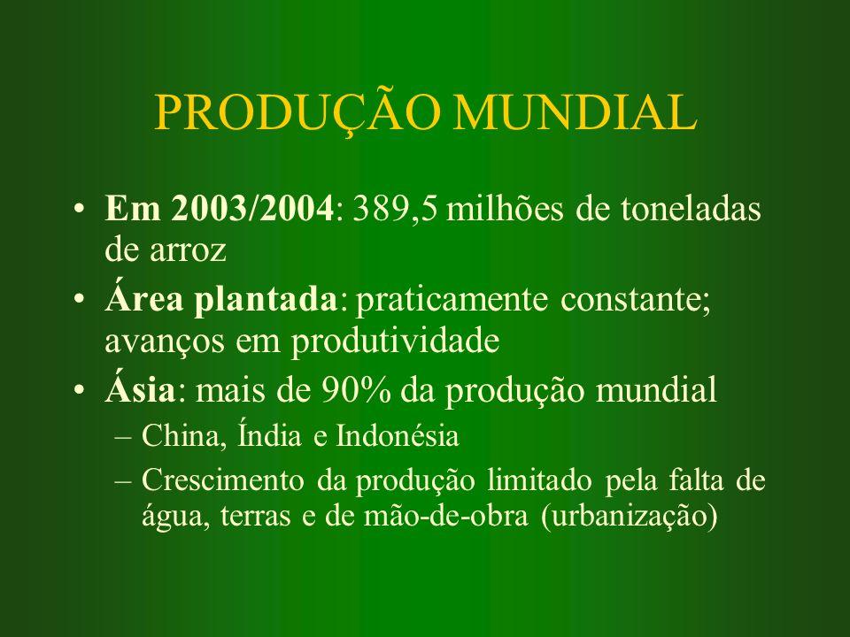 PRODUÇÃO MUNDIAL Em 2003/2004: 389,5 milhões de toneladas de arroz
