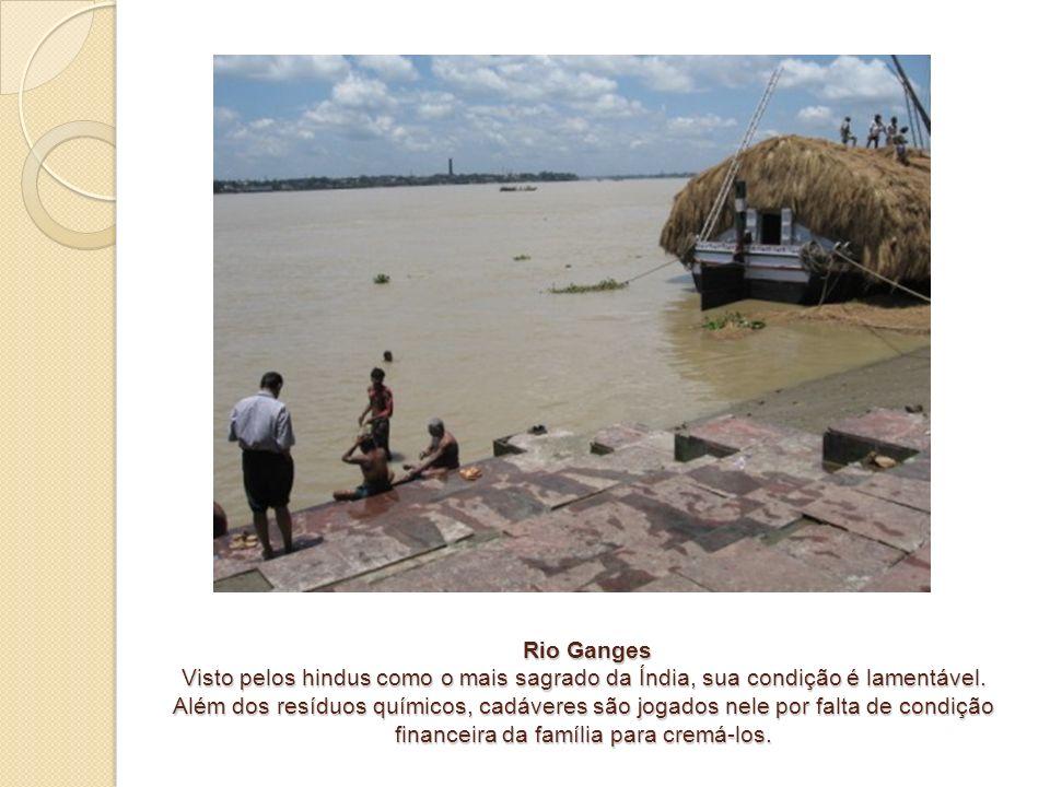 Rio Ganges Visto pelos hindus como o mais sagrado da Índia, sua condição é lamentável.
