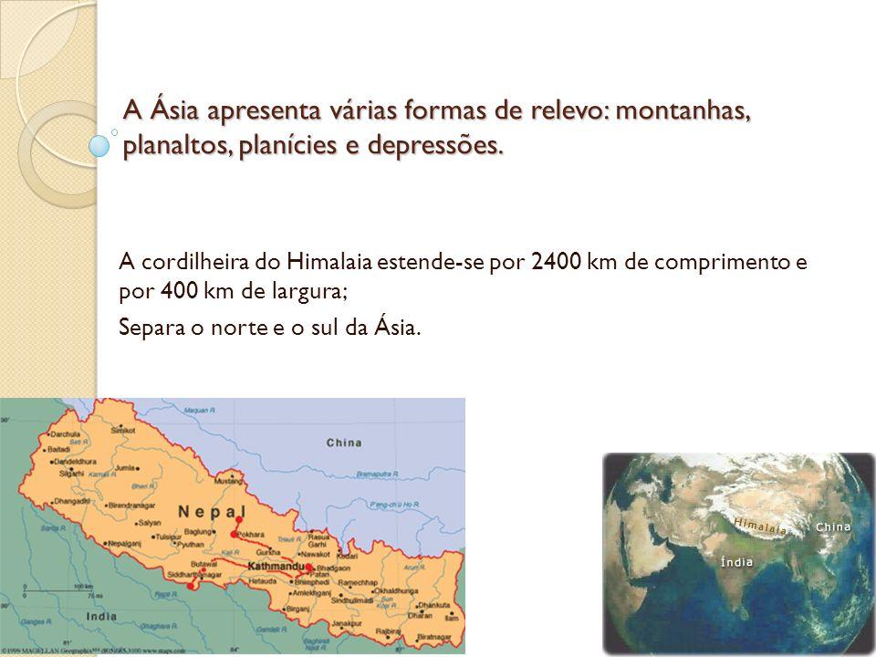 A Ásia apresenta várias formas de relevo: montanhas, planaltos, planícies e depressões.