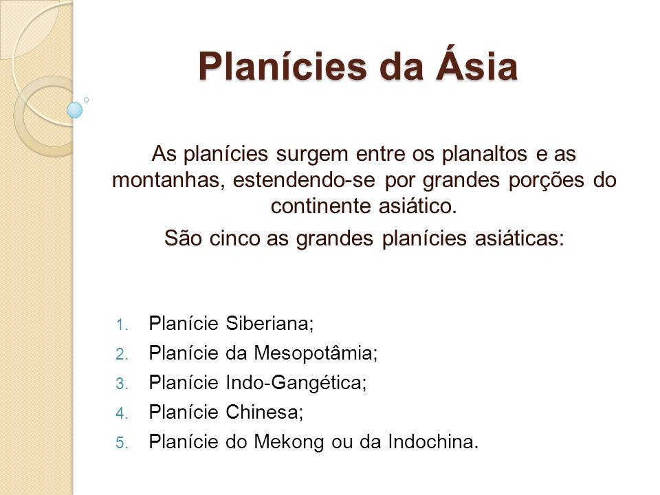 São cinco as grandes planícies asiáticas: