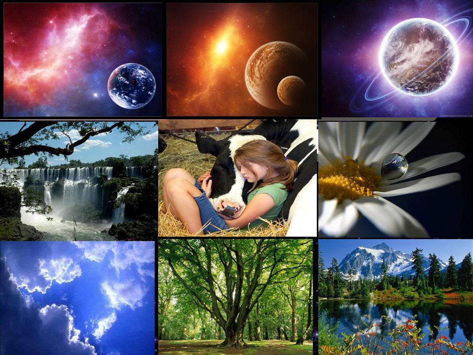 O que é Deus Deus é a inteligência suprema, causa primária de todas as coisas. Pela obra se conhece o autor.