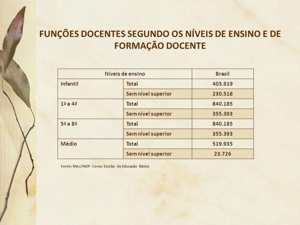 FUNÇÕES DOCENTES SEGUNDO OS NÍVEIS DE ENSINO E DE FORMAÇÃO DOCENTE