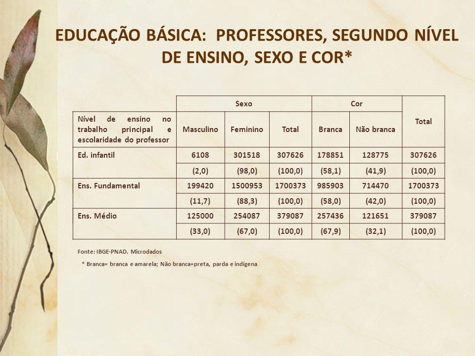 EDUCAÇÃO BÁSICA: PROFESSORES, SEGUNDO NÍVEL DE ENSINO, SEXO E COR*