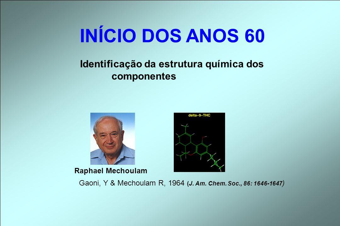 Identificação da estrutura química dos componentes