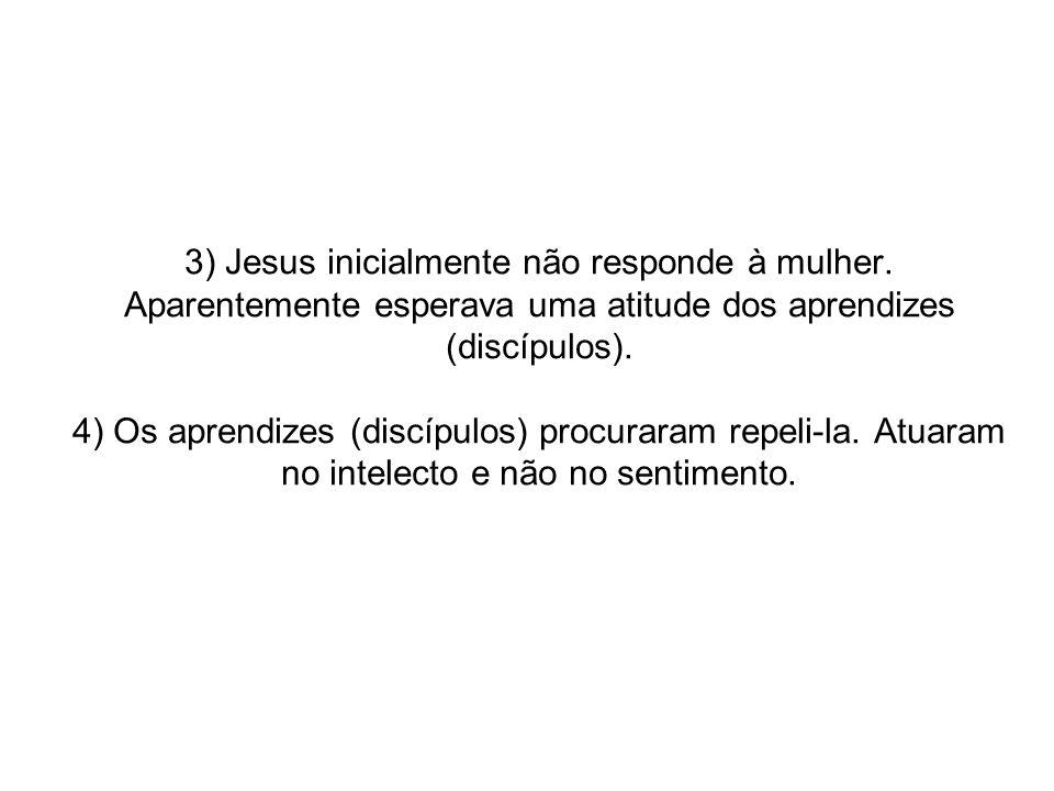 3) Jesus inicialmente não responde à mulher