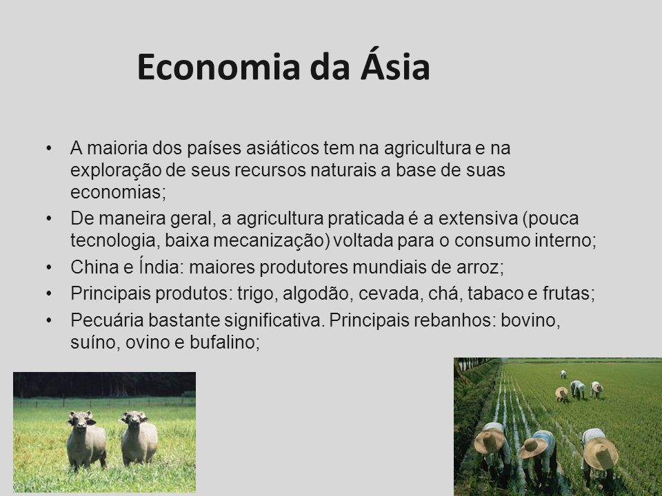 Economia da ÁsiaA maioria dos países asiáticos tem na agricultura e na exploração de seus recursos naturais a base de suas economias;