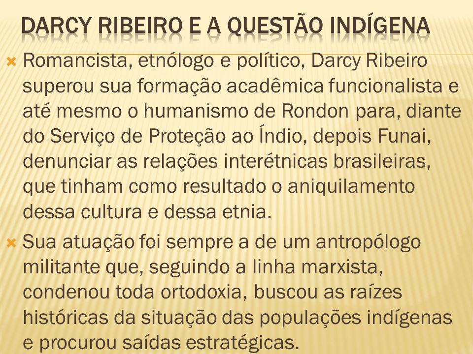 Darcy ribeiro e a questão indígena