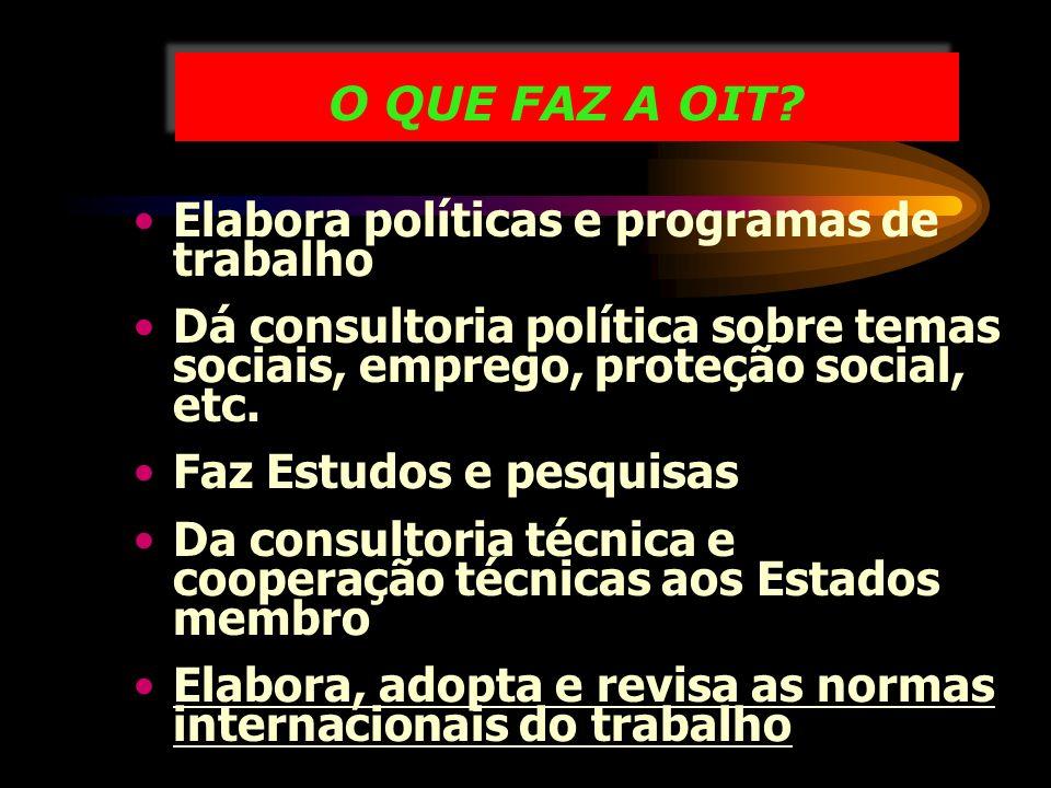 O QUE FAZ A OIT Elabora políticas e programas de trabalho. Dá consultoria política sobre temas sociais, emprego, proteção social, etc.