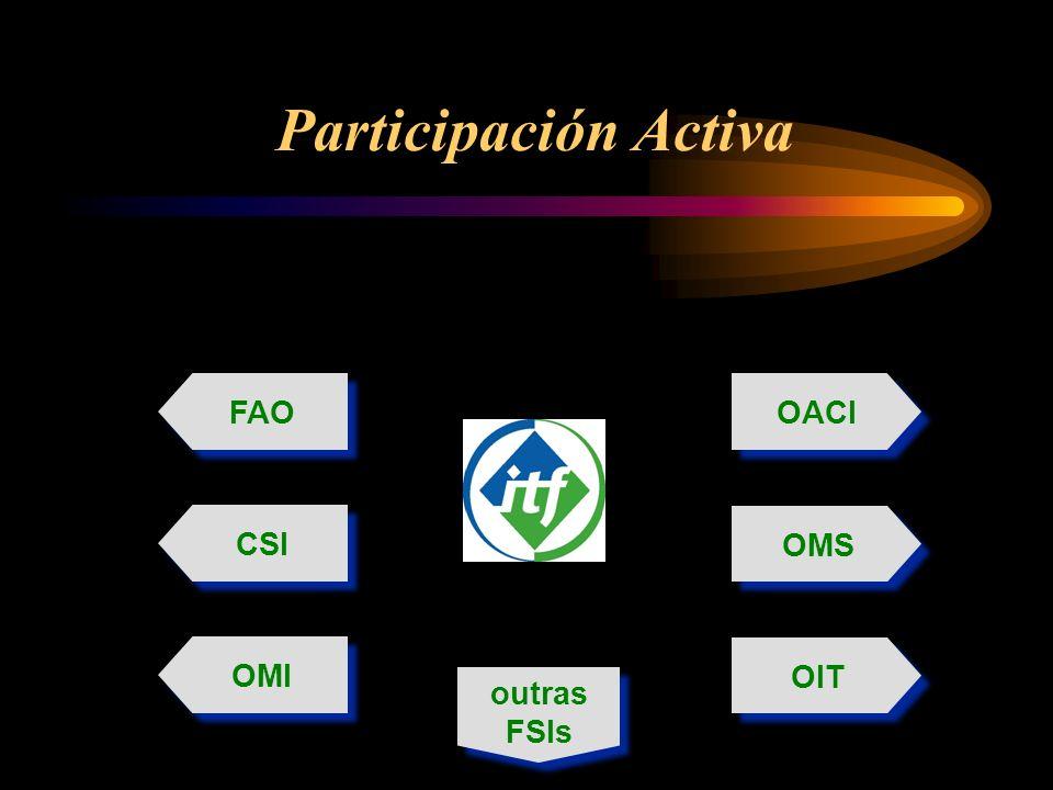 Participación Activa FAO OACI CSI OMS OMI outras FSIs OIT