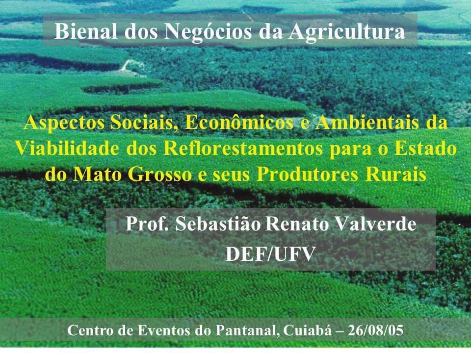 Prof. Sebastião Renato Valverde DEF/UFV