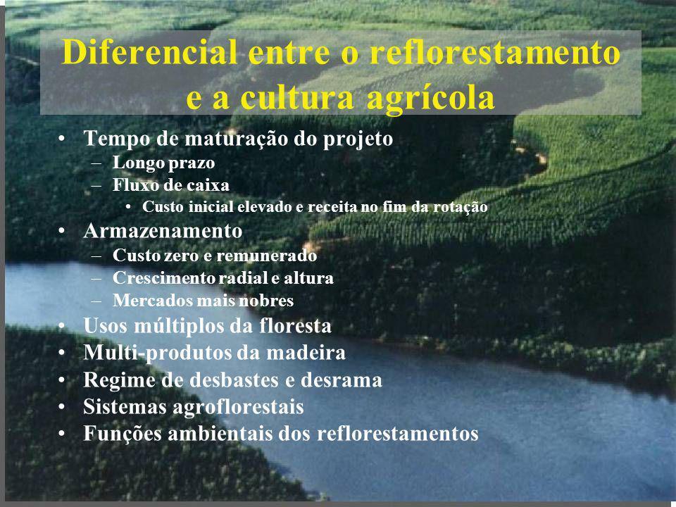 Diferencial entre o reflorestamento e a cultura agrícola