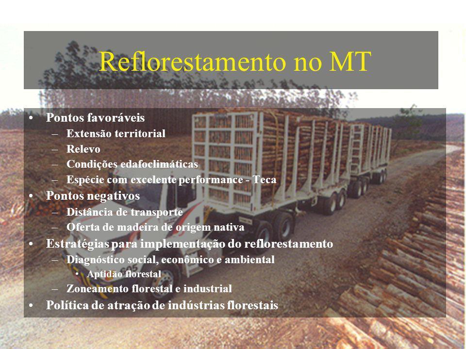 Reflorestamento no MT Pontos favoráveis Pontos negativos