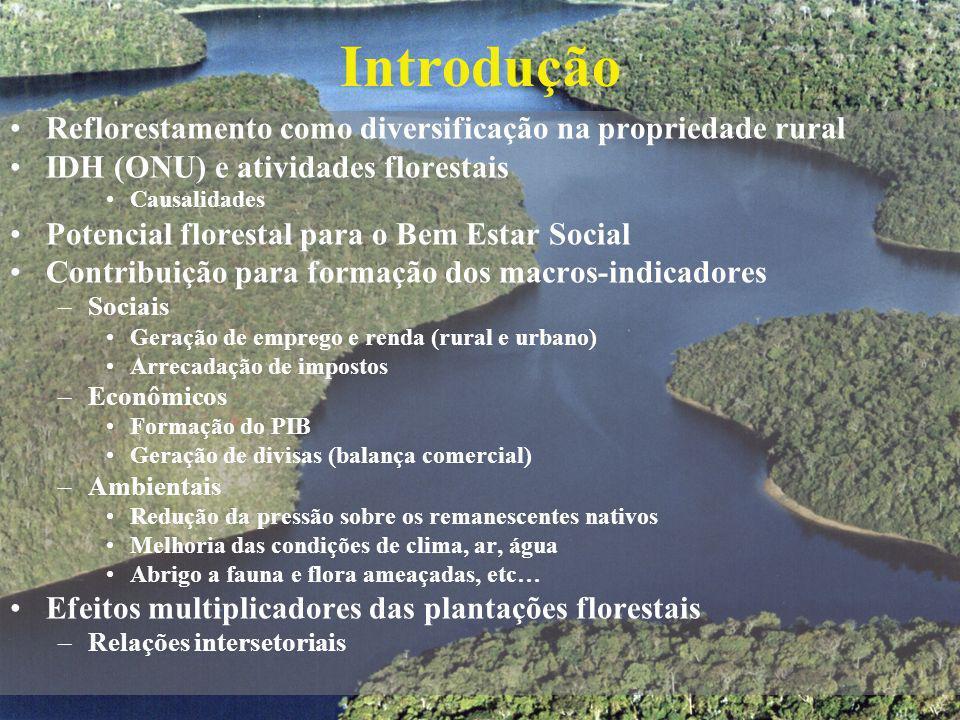 Introdução Reflorestamento como diversificação na propriedade rural